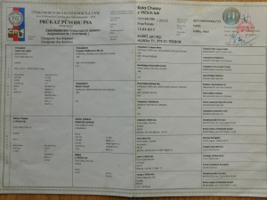 DSCN5342